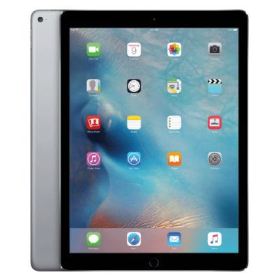 iPad Pro Wi Fi 32GB Space Grey MLMN2HNA price in hyderabad, telangana