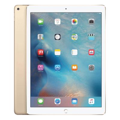 iPad Pro Wi Fi 256GB Gold MLN12HNA price in hyderabad, telangana