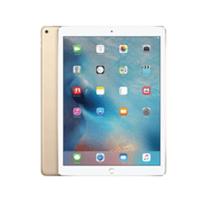 Apple iPad Pro WiFi 256GB Gold MLN12HNA price in hyderabad, telangana