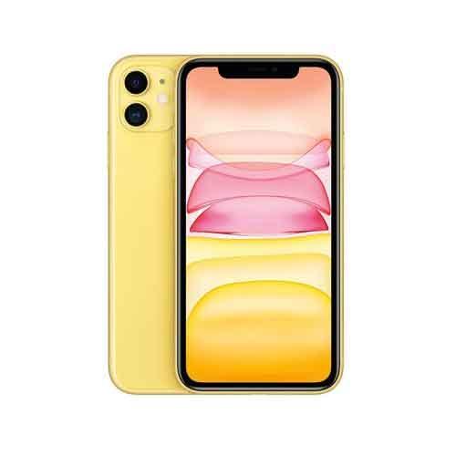 Apple IPHONE 11 256GB MHDT3HNA price in hyderabad