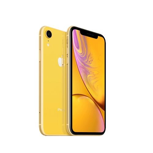 Apple iPhone XR 64GB MH6Q3HNA price in hyderabad